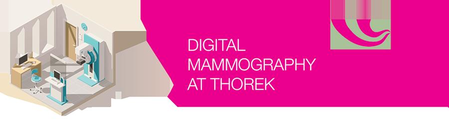 MammoHeaderArt-1